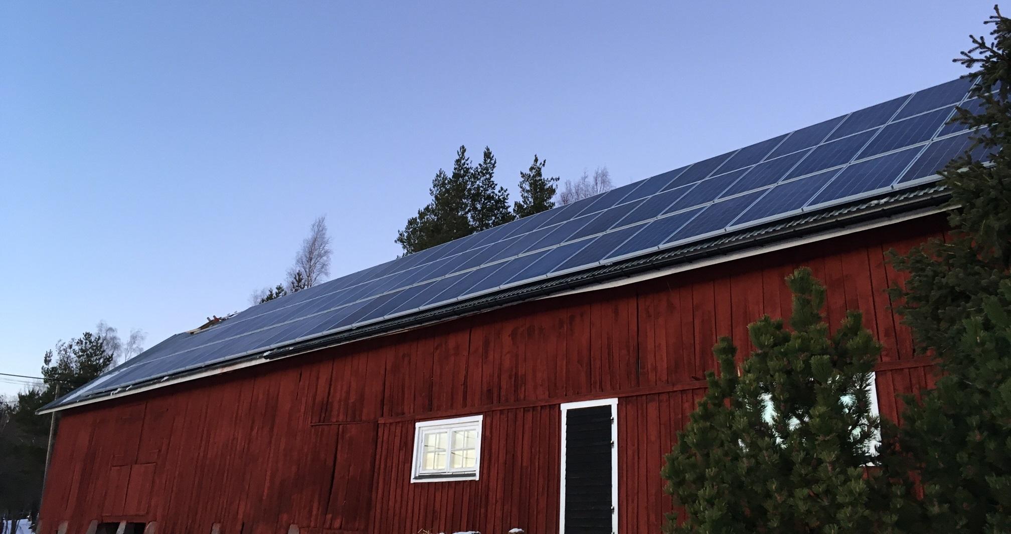 Solceller på bondgård